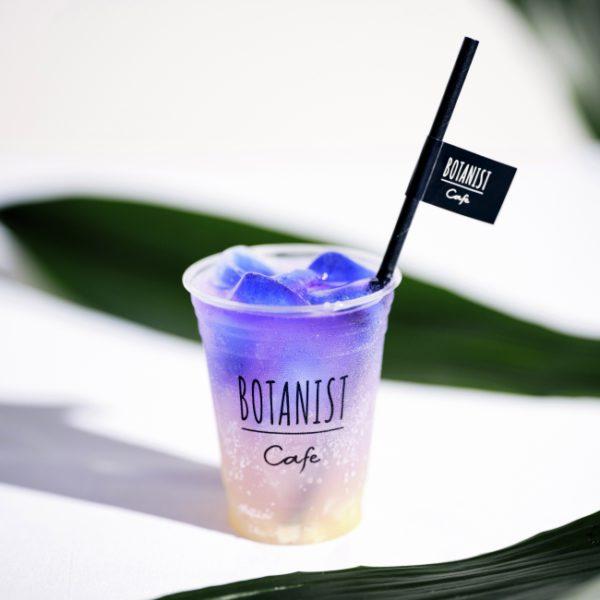 ボタニカルソーダ<br>アロエ×パイン