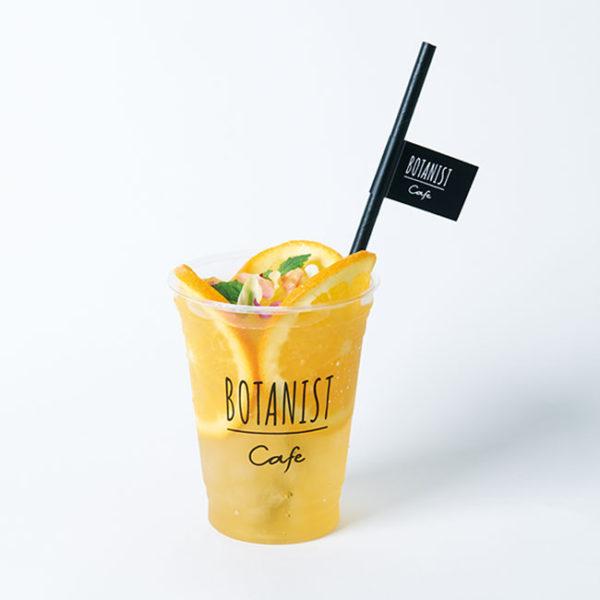 Myボタニカル クラフトティー オレンジ